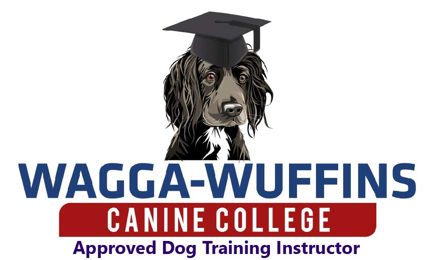 This image has an empty alt attribute; its file name is WaggaInstructor-2.jpg